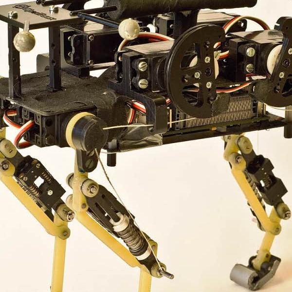 Робот, Робот с кошачьей походкой