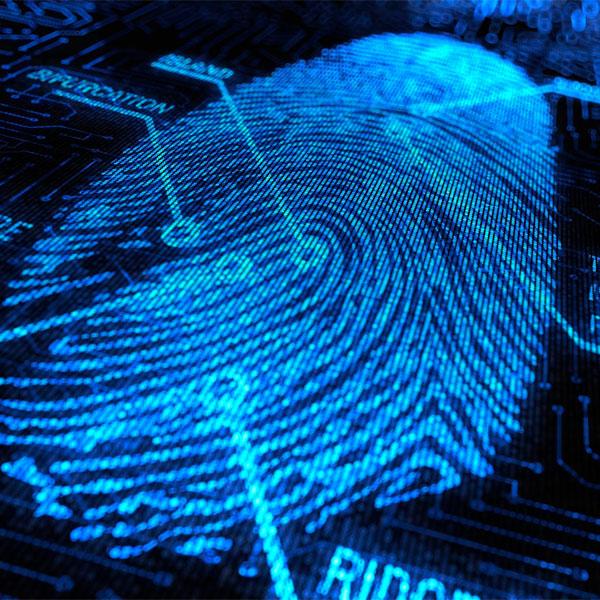 iPhone, Apple, отпечатки пальцев, безопасность, iPhone 5S — сканеру отпечатков быть