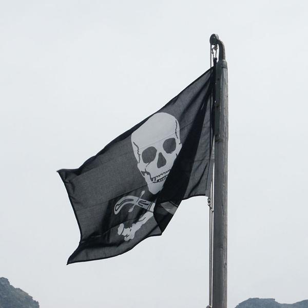 Pirate Bay, PirateBrowser, пиратство, Количество скачиваний с веб-браузера Pirate Bay достигло 1 миллиона
