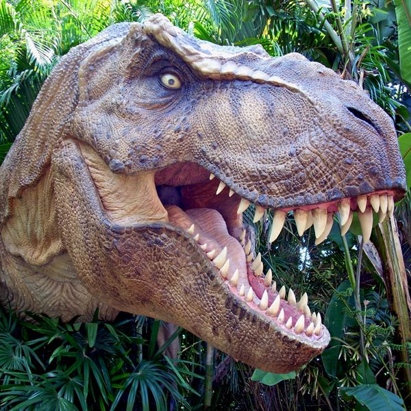 палеонтология,тираннозавр,динозавры,археология,ископаемые, Палеонтология: правда о тираннозавре