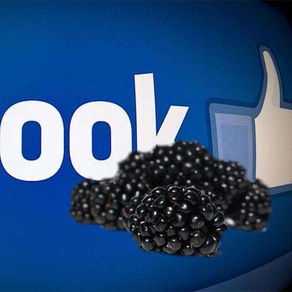 биткоинты, пришел к успеху, заработок в сети, BlackBerry может быть куплена Facebook