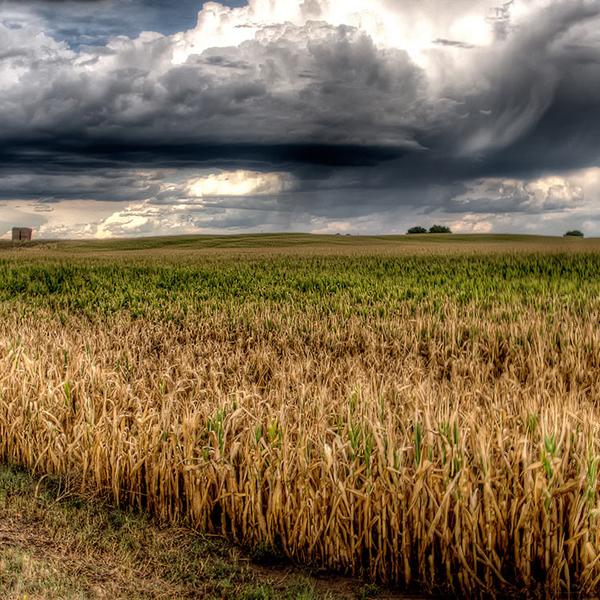 климат, погода, Хронология контроля погоды