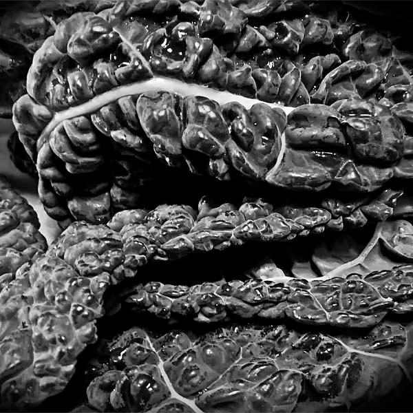 мозг, нейробиология, Нейробиология:  новый взгляд на мозг
