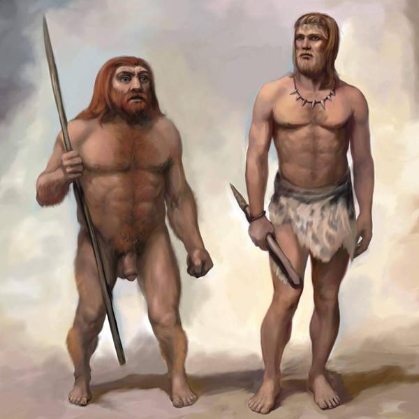 геном, ДНК, археология, Обнаружен новый предок современного человека