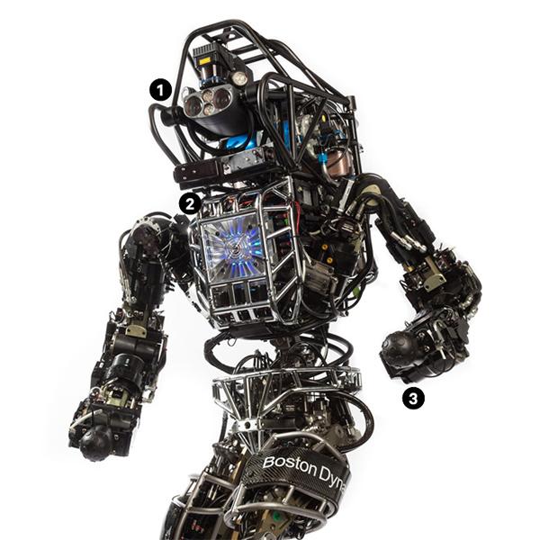 Робот,роботехника,DARPA, Однажды этот робот может спасти вам жизнь