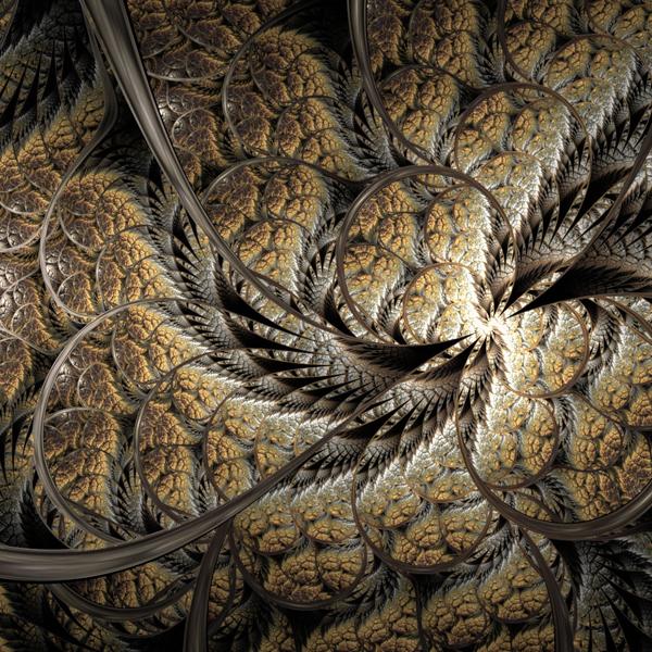 фрактал,сложность,природа, Красота и сложность: фрактальные узоры Земли
