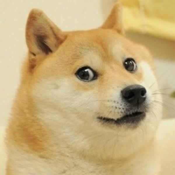 криптовалюта, Dogecoin, Dogecoin: криптовалюта на основе мема