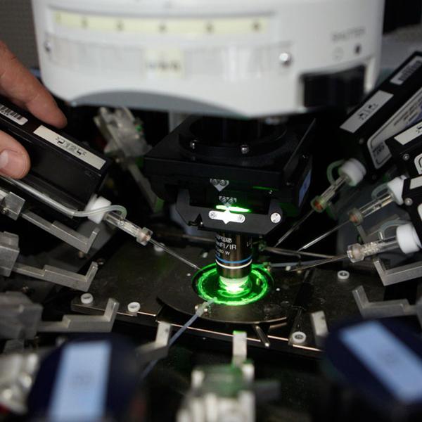 мозг, нейрон, искусственный интеллект, Искусственный мозг – реальность обозримого будущего