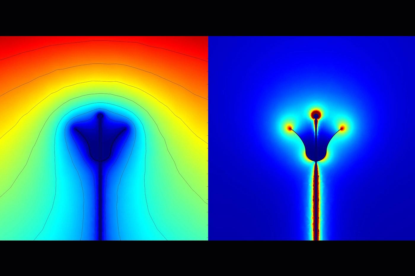 слабые электрические поля идеализированный цветок