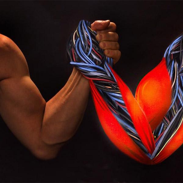 мускулы, нанотехнологии, Созданы искусственные мускулы, превышающие силу мышц человека в 1000 раз