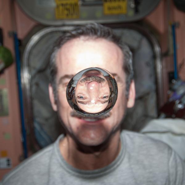 Gif,эксперимент,природа, Топ-10 необычных научных событий 2013 года по версии Smithsonian