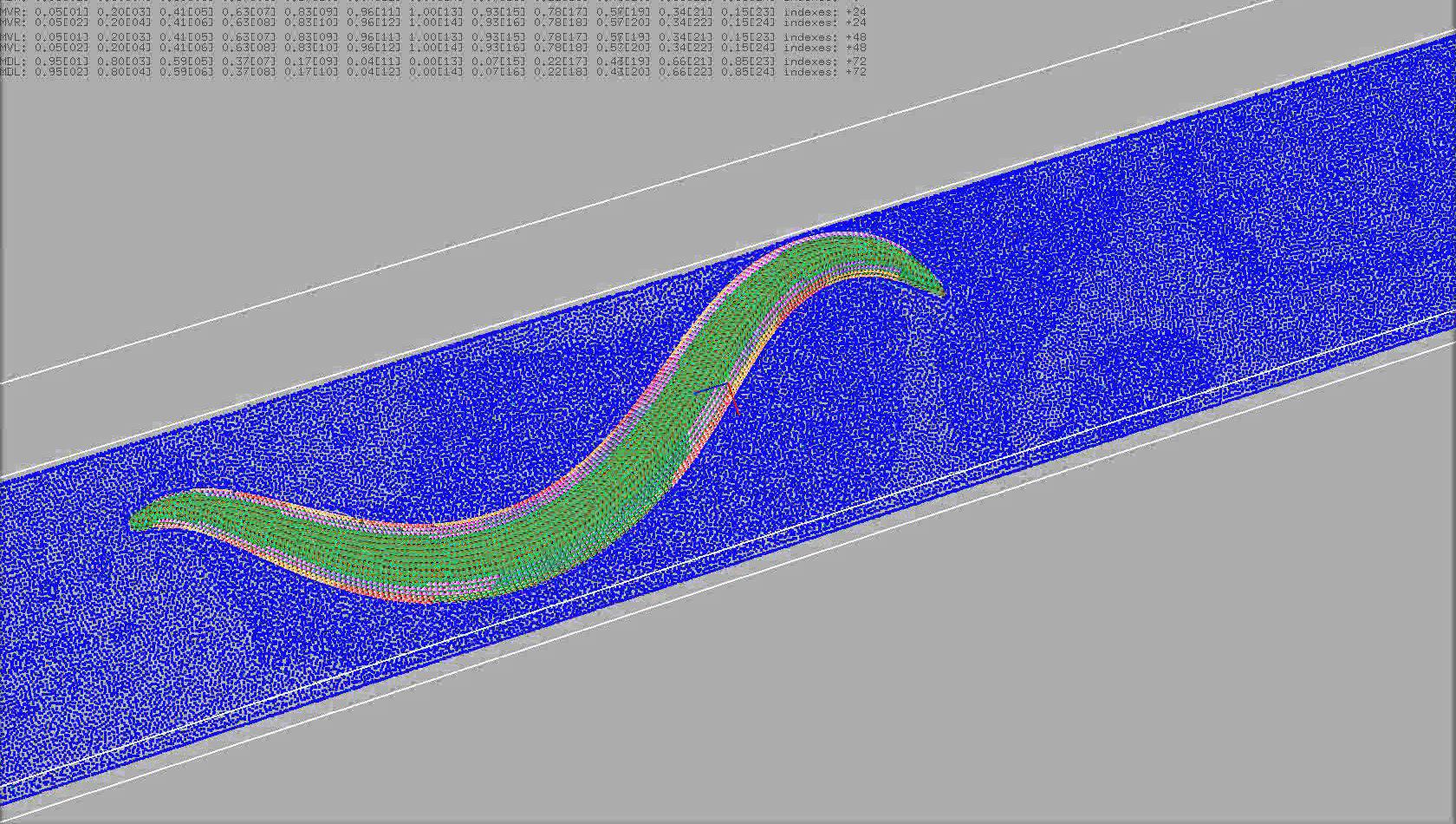 Представлена цифровая модель извивающегося червя
