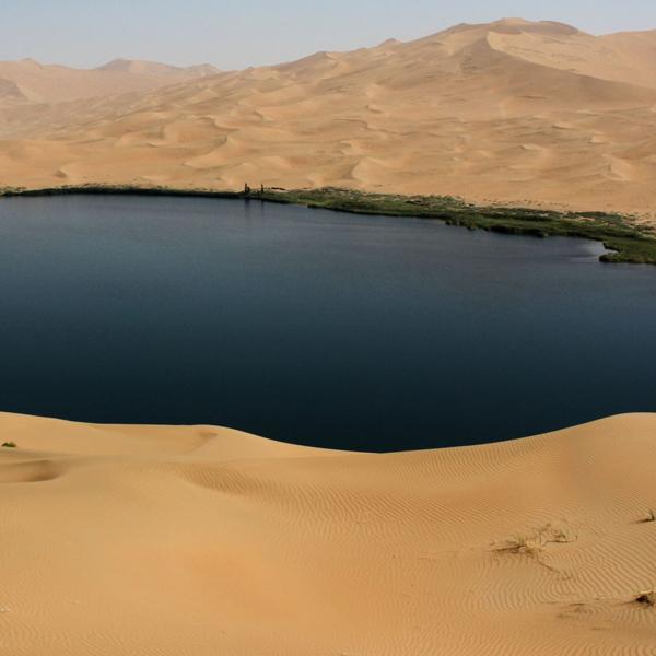 пустыня,дюны,природа,эксперимент, Ученые готовы перекопать всю пустыню, чтобы узнать, как устроены песчаные дюны