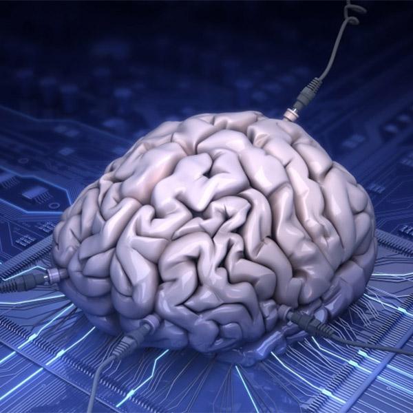 суперкомпьютер,мозг,синапс, За 40 минут суперкомпьютер сымитировал секунду работы мозга