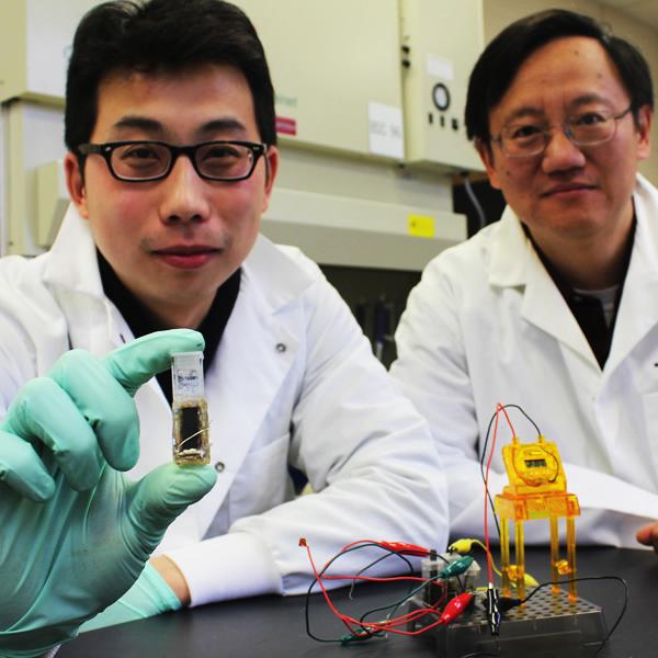 Аккумулятор, сахар, мальтодекстрин, «Сахарные» аккумуляторы могут заменить литиево-ионные