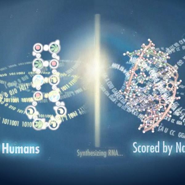 EteRNA, Онлайн-игра помогла ученым повысить эффективность сборки РНК