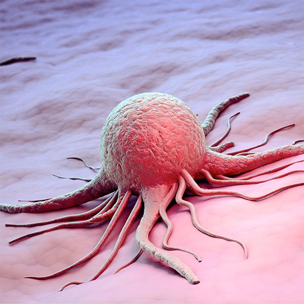 рак, медицина, Новое лекарство взрывает раковые клетки в мозге