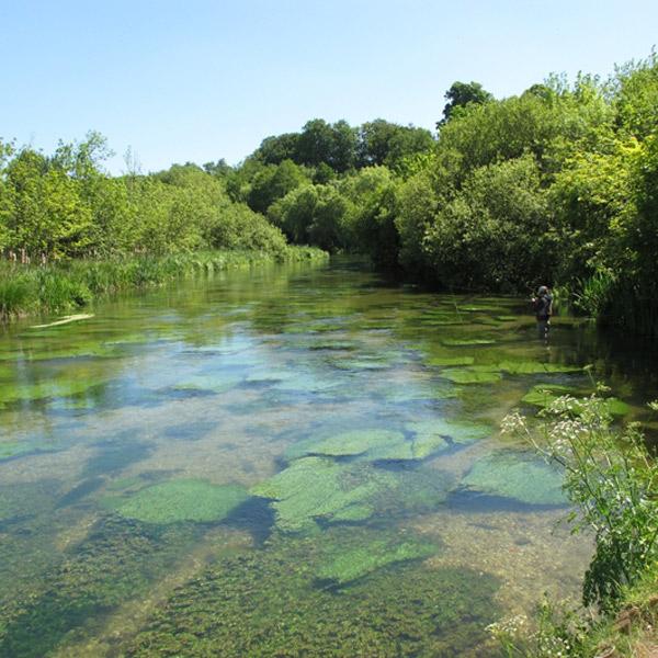 метан,газ,энергия, Метан как топливо в нетронутых водах меловых рек