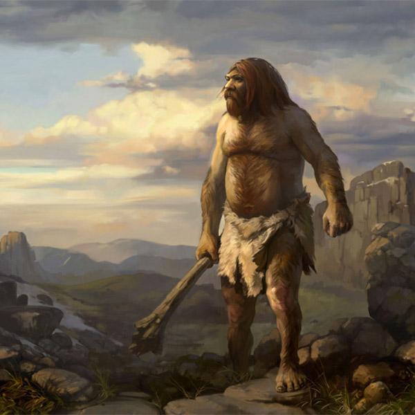 Эволюция, неандертальцы, статистическое моделирование, Среди предков современного человека оказались и неандертальцы