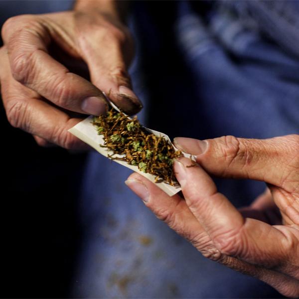мозг, марихуана, Регулярное употребление марихуаны приводит к изменениям в головном мозге