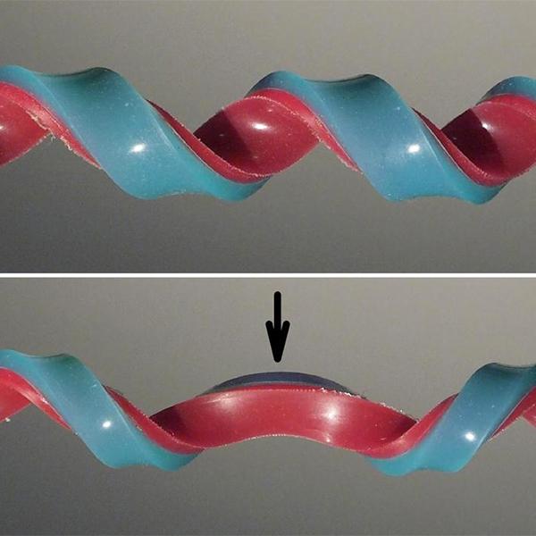 спираль,полуспираль, Ученые создали новую конструкцию, играя в резиночку