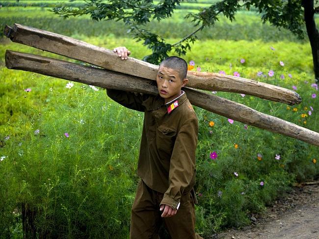 Говорят что северокорейская армия