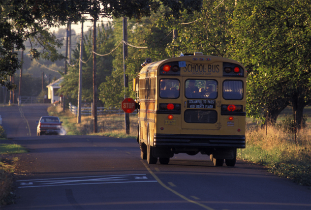 Женщина остановила школьный автобус